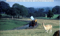 Excelsior No. 2   Llama @ Whipsnade Zoo Oct 1979 � Paul Bartlett [1w]