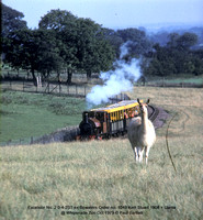 Excelsior No. 2   Llama @ Whipsnade Zoo Oct 1979 � Paul Bartlett w