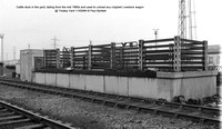Cattle dock @ Tinsley Yard 84-03-11 � Paul Bartlett [2w]