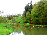 The wave @ Himalayan garden and sculpture park, Grewelthorpe � Paul Bartlett 2r