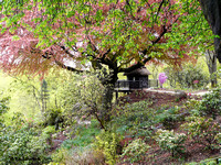 Summer house @ Himalayan garden and sculpture park, Grewelthorpe � Paul Bartlett [1r]