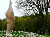 Sophistry (sycamore wing) @ Himalayan garden and sculpture park, Grewelthorpe � Paul Bartlett [3r]