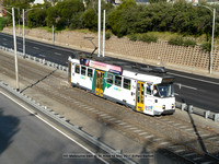 141 Melbourne tram @ St. Kilda 16 May 2017 © Paul Bartlett