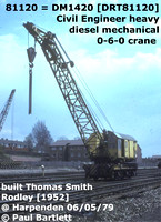DR-811-- CCE HD DM Cranes, runners, match