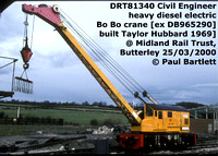 DR-813-- CCE HD DE Cranes, runners, match