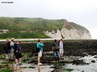The Yorkshire Wildlife Trust?s Living Seas Centre at Flamborough South Landing 12-07-2014 � Paul Bartlett [1w]