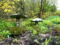 Steel mushrooms @ Himalayan garden and sculpture park, Grewelthorpe � Paul Bartlett [1r]